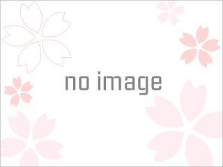 白米千枚田のイルミネーション写真