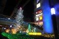 Tachikawa 燦燦 Illumination