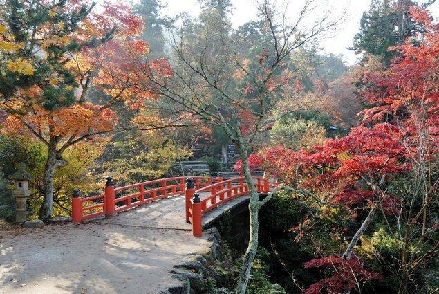 宮島・紅葉谷公園の紅葉