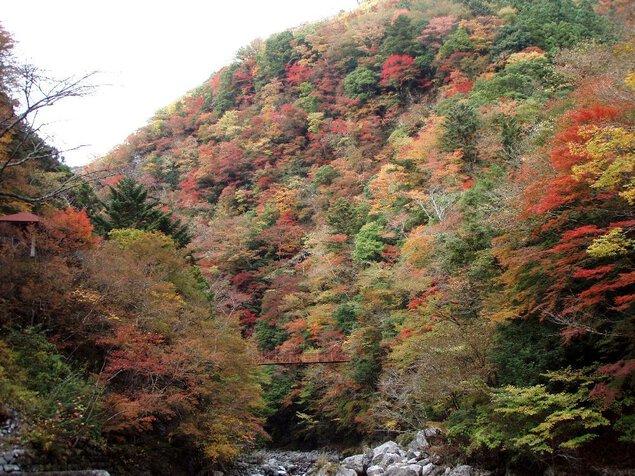 べふ峡の紅葉
