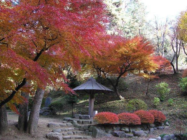 徳明園の紅葉
