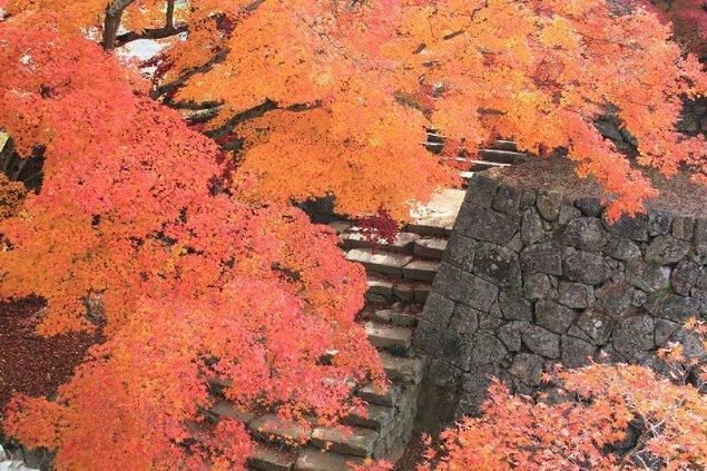 津山城(鶴山公園)の紅葉