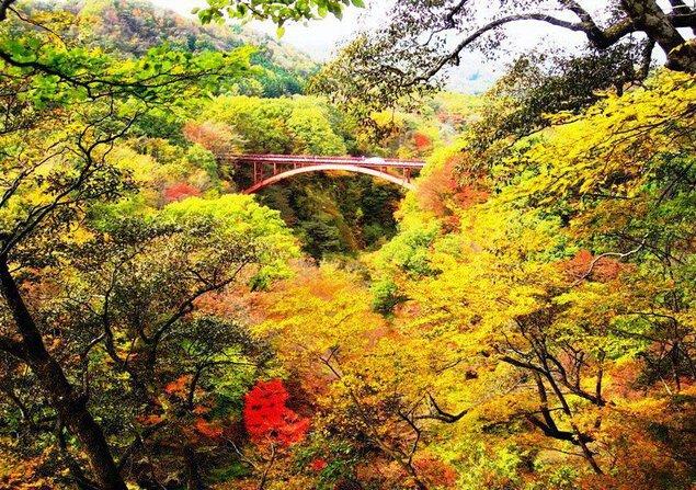 雪割橋・雪割渓谷の紅葉