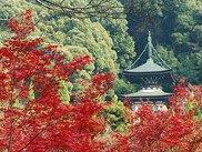 永観堂 禅林寺