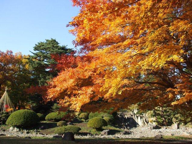 弘前公園(弘前城)の紅葉