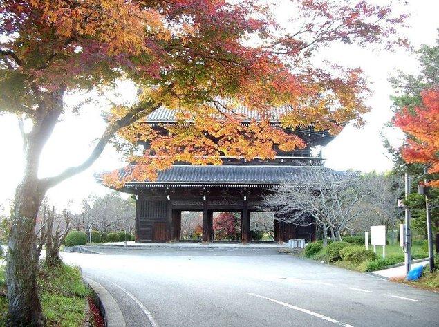 根來寺の紅葉
