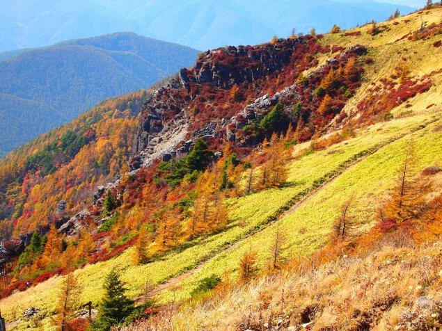 美ヶ原高原の紅葉