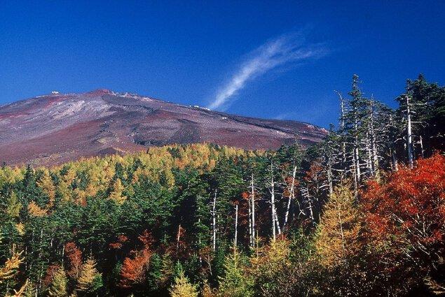 富士山富士宮口5合目(静岡側)及び富士山スカイラインの紅葉