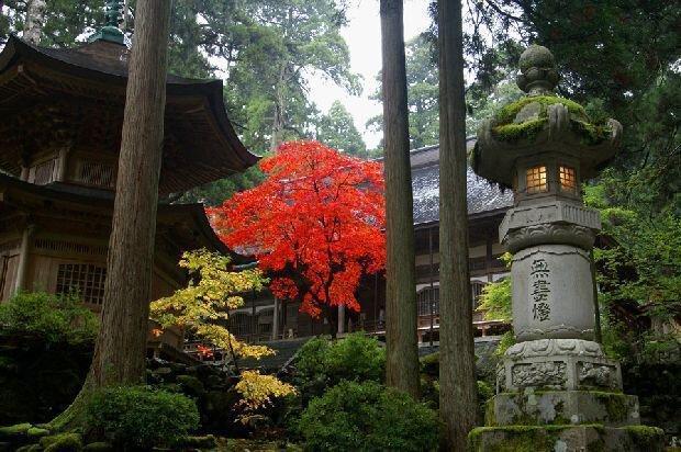 永平寺の紅葉