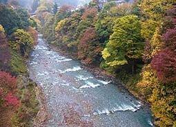 奥多摩(氷川渓谷)の紅葉