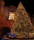 冬季限定イベント「クリスマス イルミネーション」