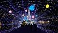 天理市 光の祭典2016