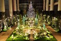 光と花のページェント2016 クリスマスフラワーショー -宇宙のクリスマス-