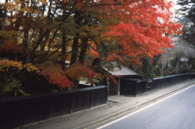 角館の紅葉