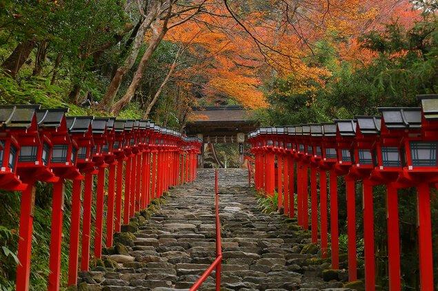 洛北(貴船神社)の紅葉