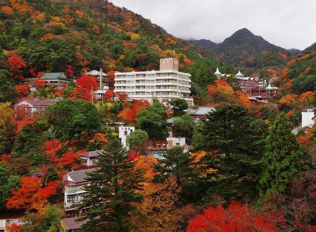 御在所岳(山麓)の紅葉