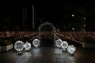 市堀川(京橋~中橋)