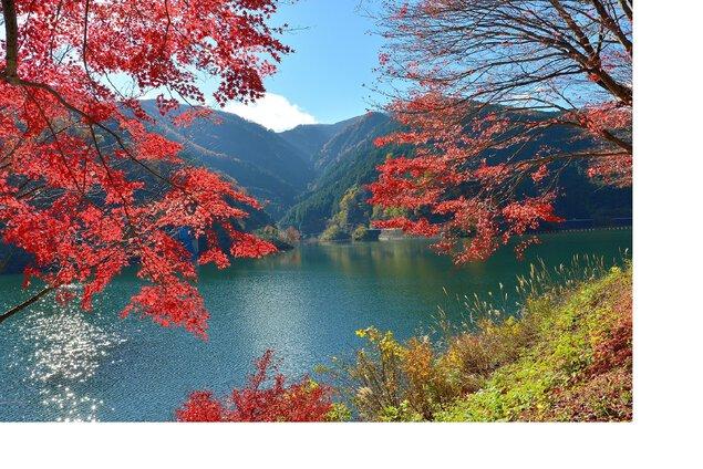 有間渓谷の紅葉