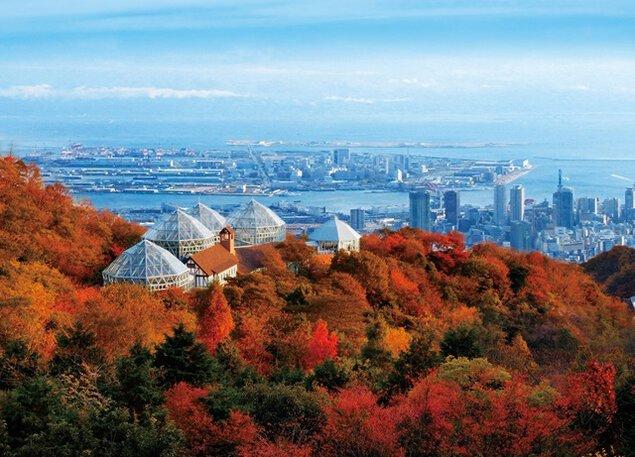 神戸布引ハーブ園/ロープウェイの紅葉