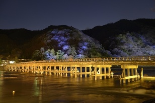 京都嵯峨・嵐山周辺