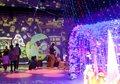 パティオDEクリスマス2016~光の切り絵とイルミネーション~
