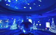 メリークリスマス in 新江ノ島水族館 2016