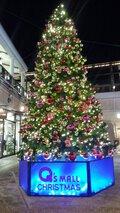 みのおキューズモール クリスマスイルミネーション