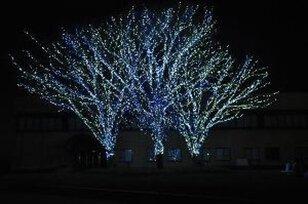 徳島文理大学香川キャンパス