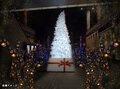 KAB・くまもと森都心プラザ クリスマスイルミネーション