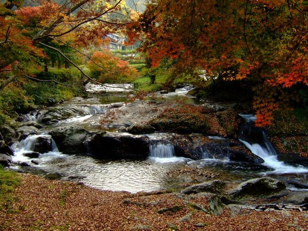 八重滝の紅葉