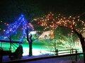 飛騨の里 クリスマスライトアップ