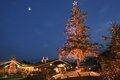モクモク クリスマスツリーライトアップ