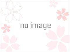 第67回 呉の夏まつり「海上花火大会」