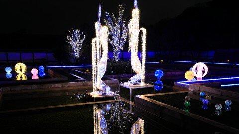 松山城二之丸史跡庭園、花園町通り、松山市駅の紅葉写真