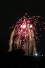 キミドリさん投稿の令和元年度 さいたま市花火大会 大和田公園会場