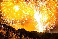 nyantyuさん投稿の第46回すその夏まつり 富士山すその大花火大会