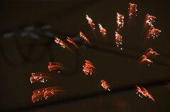 Mitchさん投稿の第43回綾瀬市商工会青年部花火大会