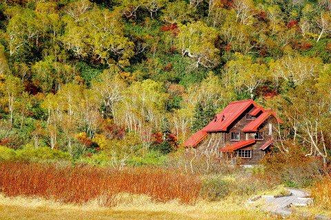 栂池自然園の紅葉写真