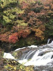 日光(竜頭ノ滝)の紅葉