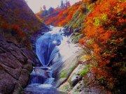 桃洞滝の紅葉