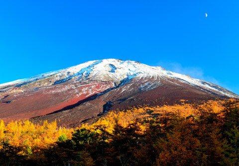 富士山5合目(山梨側)の紅葉写真