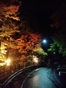 奥津渓の紅葉写真