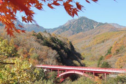 八ヶ岳高原の紅葉写真