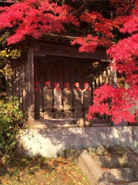 永源寺(もみじ寺)の紅葉写真