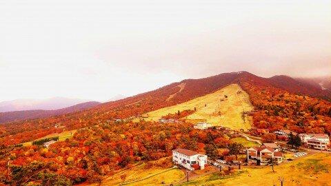 大山(大山寺)の紅葉写真