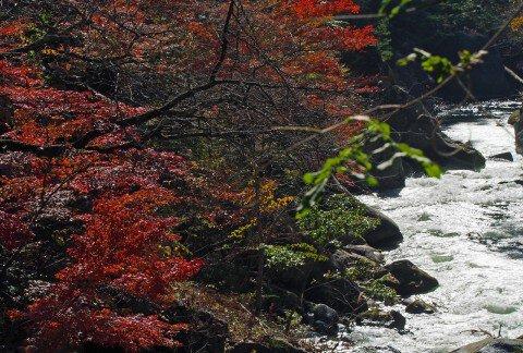 御岳昇仙峡の紅葉写真