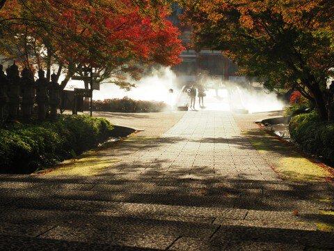 箕面(勝尾寺)の紅葉写真