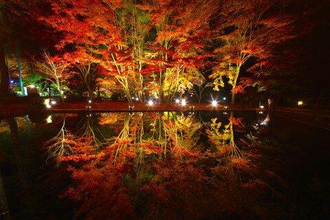 曽木公園の紅葉写真