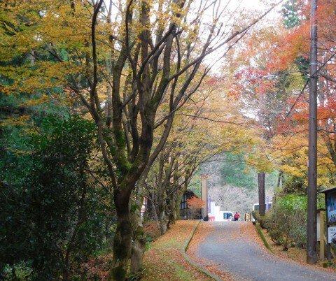 比叡山の紅葉写真