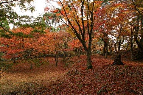 麓城跡の紅葉写真